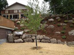 landscaping ideas on a steep hill backyard fence ideas