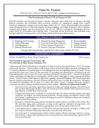 Sample Resume For Internal Auditor by Resume Sample Chief Financial Officer Page 2 13 Useful Materials