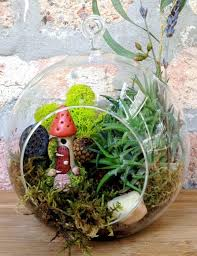 mushroom house ornaments and air plant terrarium alongside clear