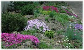 gardens of rice creek home