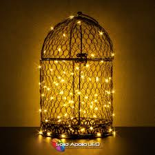 String Of Led Lights by Warm White Led String Light 65ft