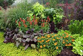 Planning A Flower Garden Layout Flower Bed Plants Ideas