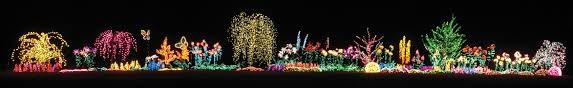 Botanical Gardens Christmas Lights by Pictures From December 2006 Bellevue Botanical Gardens