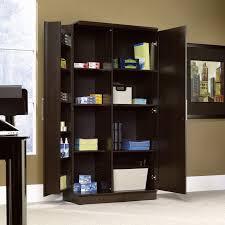 Office Cabinet With Doors Shelves Sensational Office Cabinets And Shelves Organized With