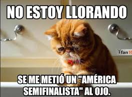 Memes Del America Vs Pumas - américa a un paso de la final tras vencer a monterrey memes