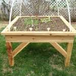 raised vegetable garden plans cuoxdks decorating clear