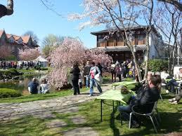 Bad Langensalza Rumpelburg 13 Hanami Kirschblütenfest U003e Hainichland