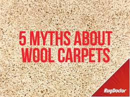 How To Clean Wool Area Rugs by 5 Myths About Cleaning Wool Carpets Rug Doctor Rug Doctor