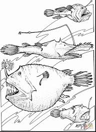 amazing deep sea angler fish coloring page with ocean coloring