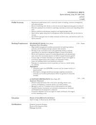 Private Banker Resume Sample by Resume Template For Banking Industry Investment Banking Resume
