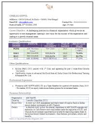 latest resume format for mba freshers resume format