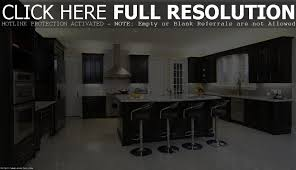 kitchens with black cabinets pictures modern cabinets
