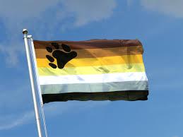 3 X 5 Flags 3 U0027 X 5 U0027 Bear Flag