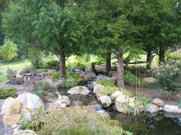 native plant nursery garden day preview u2013 the scott arboretum u0027s garden seeds