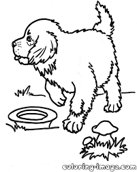 puppies free coloring pages for kids
