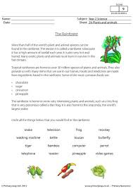 primaryleap co uk cloze activity what is a rainforest worksheet