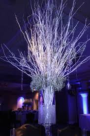 Lighted Centerpiece Ideas by Beautiful Lighted Branches For Home Accessories Ideas Huge White