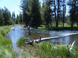 Oregon rivers images Fly fishing central oregon rivers the hook fly shop_home of jpg