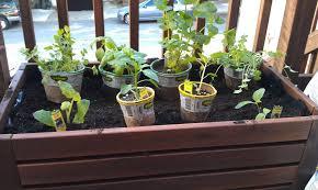 ikea planter hack materials transparent samla box 53x37x12 peat rich in organic