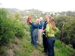 native plants claremont what you can do u2014 claremont canyon conservancy
