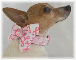 dog ribbon shamrock pink ribbon pin brooch breast cancer