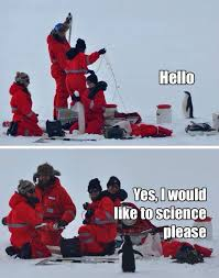 Cute Penguin Meme - enthusiastic penguin meme me in college showing up for the first
