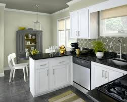 color ideas for kitchen cabinets modern kitchen colours thecoursecourse co