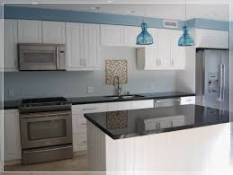 ecoshield home design reviews 100 review of ikea kitchen cabinets cabinet white kitchen