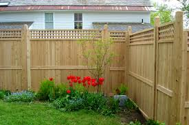 furniture awesome best privacy fence for backyard patio cost of