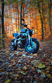 9 best buell x1 images on pinterest cafe racers google search