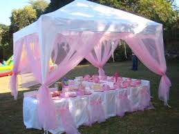 Best 25 Barbie Birthday Party by Best 25 Party Canopy Ideas On Pinterest Diy Party Canopy