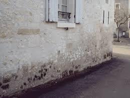 humidité mur chambre traitement de l humidité abi