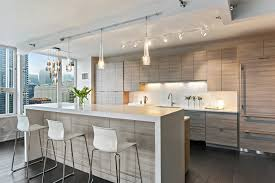Modern Kitchen Cabinets Chicago Schönheit Modern Kitchen Cabinets Chicago City Design 11313