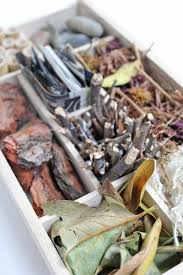 science for kids insect hotel babble dabble do