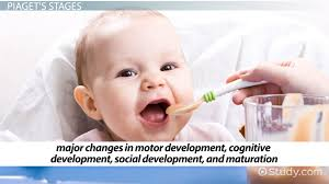 developmental perspective definition u0026 explanation video