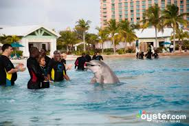 Atlantis Bahamas by The 5 Best Family Spring Break Hotels In The Bahamas Oyster Com