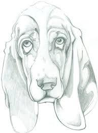 basset hound by mauesli on deviantart