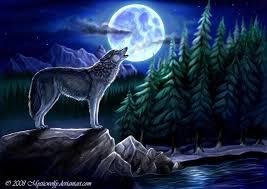 image wolf moon jpg crossing wiki fandom powered by wikia