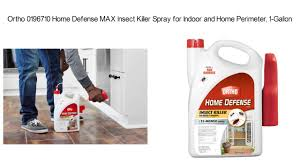 best roach killer review how to get rid of roaches fast youtube