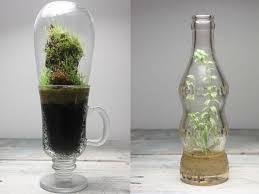 jose agatep u0027s beautiful repurposed bottles terrariums are self