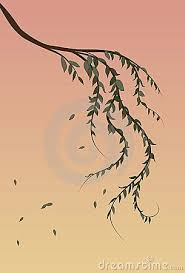 40 best ink images on pinterest willow tree tattoos trees and