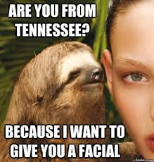 Facial Meme - are you from tennessee because i want to give you a facial sloth