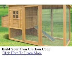 Small Backyard Chicken Coop Plans Free by Self Sufficient Living To Raising Backyard Chickens