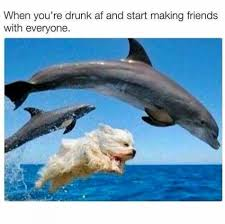 You Re Drunk Meme - when you re drunk af and start making friends with everyone meme xyz