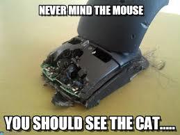 Mouse Memes - never mind the mouse mouse meme on memegen