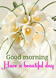 50 good morning love sms to brighten your love u0027s day good