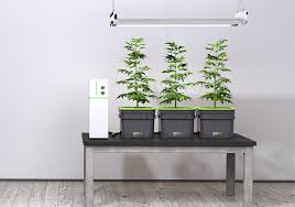 Ikea Hydroponics Garden Too Lazy To Grow Weed Let The Internet Of Things Do It For You