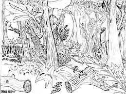 simple forest drawing free coloring pages of scenery drawings