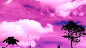 Color Pink by Pink Backgrounds Wallpaper Wallpapersafari