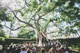 wedding backdrop tree 5 diy wedding ceremony backdrop ideas that wow